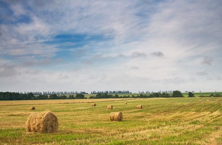 Rural landscape of haystacks and cloudy sky. Stock Photo - 7351379