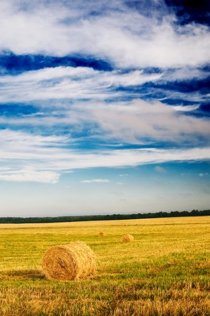 Haystacks and stubble by summertime. Stock Photo - 7423046