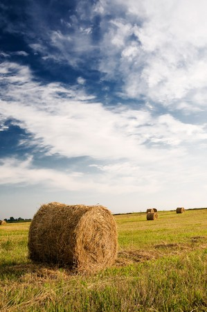 Haystack and stubble by summertime. Stock Photo - 7441336