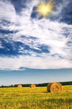 Three haystack and wonderful clouds.  photo