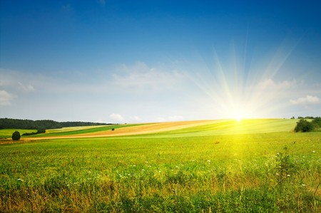 serenity: Fine summer landscape. Stock Photo