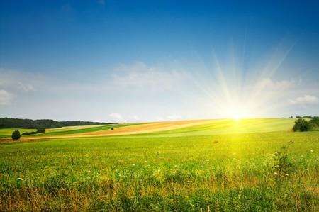 Fine summer landscape. Stock Photo