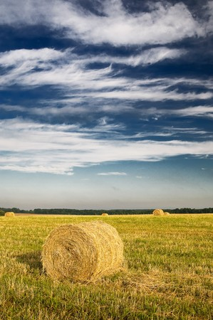 Haystacks and wonderful clouds in the blue sky. Stock Photo - 7556325