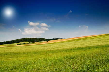 Serene summer meadow and wonderful blue sky. Stock Photo - 7556324