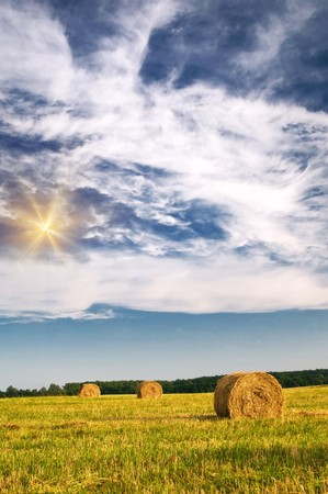 Field, three bales and amazing blue sky with white clouds. Stock Photo - 7577065