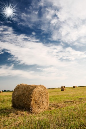 Field with bales against tender sun in the blue sky. Stock Photo - 7681605