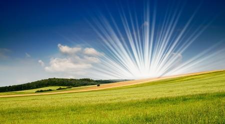 Serene summer meadow and wonderful blue sky. Stock Photo - 7767364