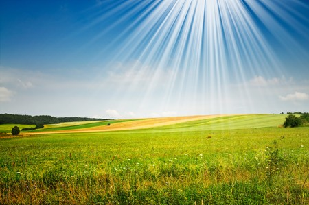 Serene summer meadow and wonderful blue sky. Stock Photo - 7767390
