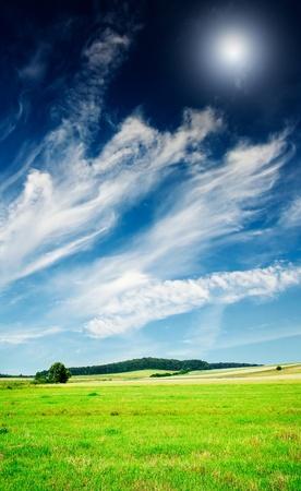 Wonderful serene summer meadow and wonderful blue sky. photo