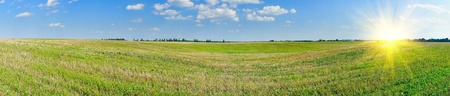 stubble field: Panorama of mown field of wheat and amazing blue sky with white clouds. Stock Photo