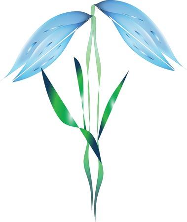 Illustration of blossom blue bellflower, isolated on white.