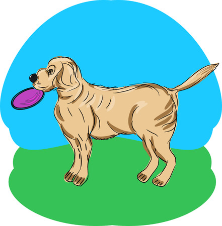 Illustration of a Retriever with a flying disk in a Park