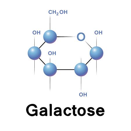 Galactose molecuul strucure, biochemie, chemie, vector illustratie