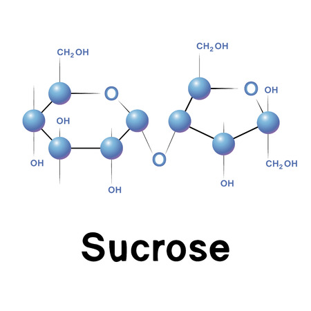 fructose: Sucrose molecule structure, biochemistry, chemistry, vector illustration