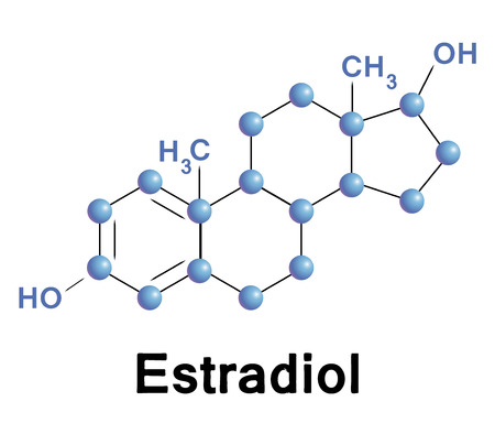 Estradiol molecule structure, medical illustration.