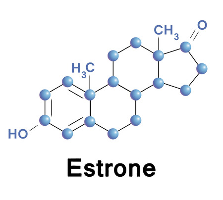menopause: Estrone molecule structure, a medical illustration. Illustration