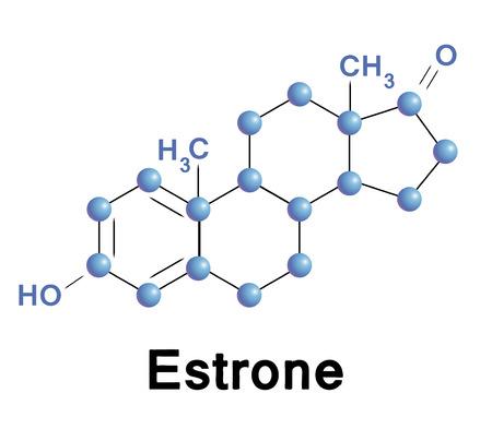 Estructura de la molécula de estrona, una ilustración médica. Foto de archivo - 29387668
