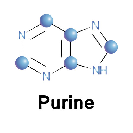 purine: Purine molecule structure, a medical illustration. Illustration