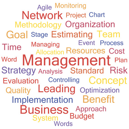 A word cloud of project management related items, vector. Vector