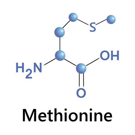 Vector illustration, the chemical formula of methionone Vector