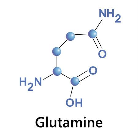 Vector illustration, the chemical formula of glutamine