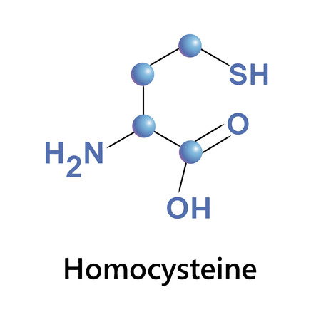 Vector illustration, the chemical formula of homocysteine