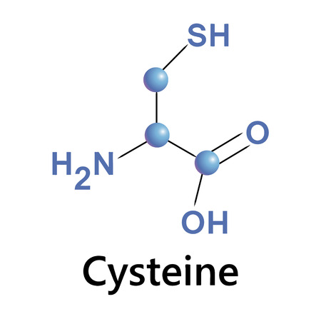Vector illustration, the chemical formula of cystine