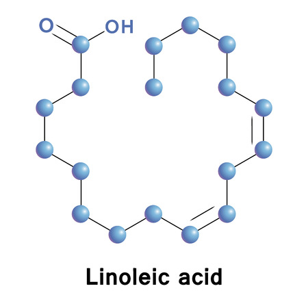 Linoleic acid Иллюстрация