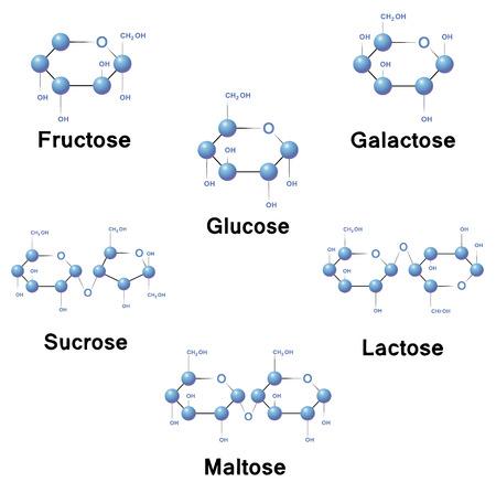 Sugar molecule strucure, biochemistry, chemistry, vector illustration.