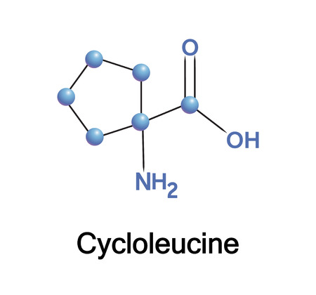 nucleic: Cycloleucine is a non-proteinogenic amino acid, inhibitor of nucleic acid methylation. Vector illustration.