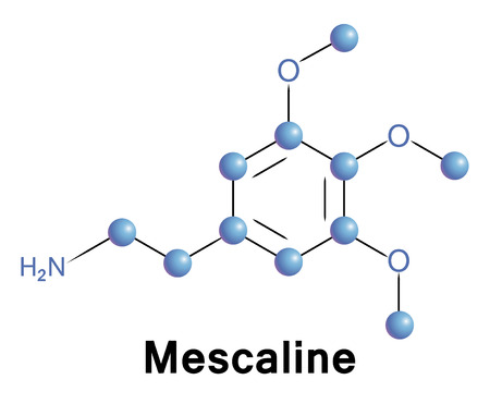 bioscience: Mescaline Illustration