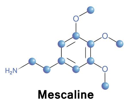 mescaline: Mescaline Illustration