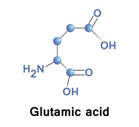 biosynthesis: Glutamic acid, vector.