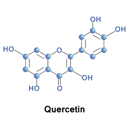 Quercetin is a flavonol found in many fruits, vegetables, leaves and grains. It can be used as an ingredient in supplements, beverages, or foods, promoted for prevention of cancer. Vector medical illustration.