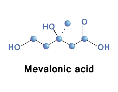 Mevalonic acid (mevalonate) is a key organic compound in biochemistry, and is of major pharmaceutical importance. Vector medical illustration.