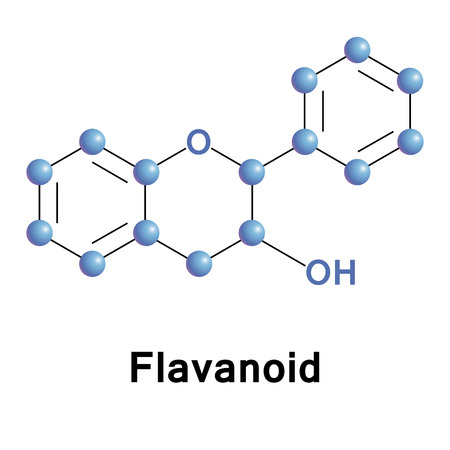 Flavonoids are a class of plant secondary metabolites, occurring in various plants. Vector medical illustration of chemical structure.