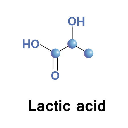 Lactic acid is an organic compound. In the form of its conjugate base called lactate, it plays a role in several biochemical processes. Vector medical illustration.