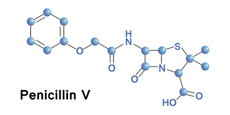 penicillin: Phenoxymethylpenicillin, commonly known as penicillin V, is an antibiotic useful for the treatment of a number of bacterial infections. Vector medical illustration.