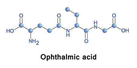 Ophthalmic acid, also known as ophthalmate, chemically L-g-glutamyl-L-a-aminobutyrylglycine, is a tripeptide analog of glutathione in which the cysteine group is replaced by L-2-aminobutyrate.