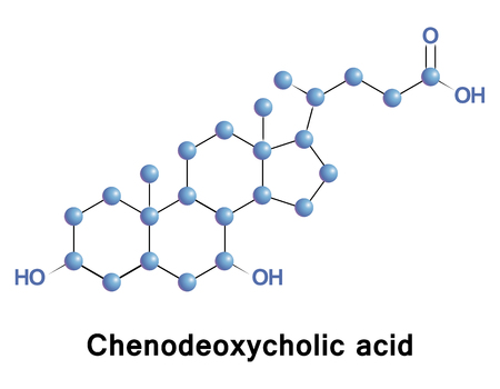 Chenodeoxycholic Acid Is One Of The Main Bile Acids Produced.. Stock ...