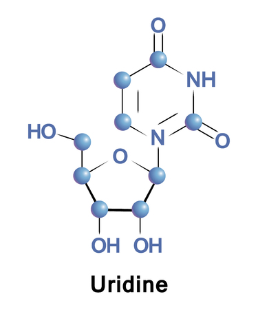 Uridine is a glycosylated pyrimidine-analog containing uracil attached to a ribose ring via N1-glycosidic bond. It is one of the five standard nucleosides which make up nucleic acids