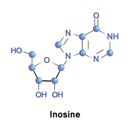purine: Inosine is a nucleoside of hypoxanthine attached to a ribose ring via a N9-glycosidic bond. It is found in tRNA and is essential for translation of the genetic code in wobble base pairs.
