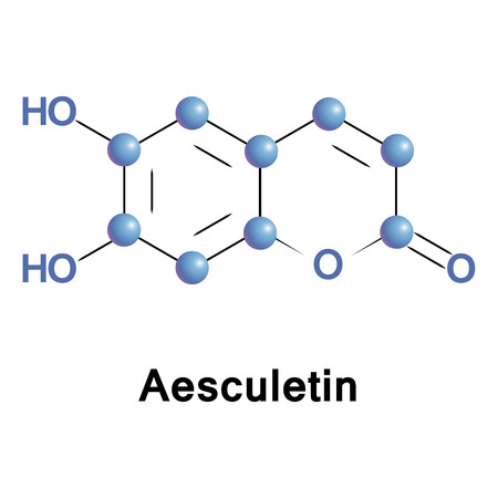 Aesculetin is a derivative of coumarin. It is a natural lactone that derives from the intramolecular cyclization of a cinnamic acid derivative. Stock Photo