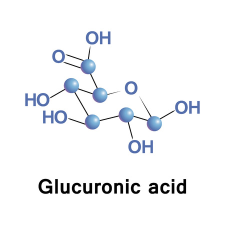 found it: Glucuronic acid is a uronic acid that was first isolated from urine. It is found in many gums such as Gum arabic and Xanthan, and is important for the metabolism of microorganisms, plants and animals.