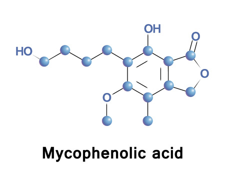 Mycophenolic acid, or mycophenolate, is an immunosuppressant drug used to prevent rejection in organ transplantation. It inhibits an enzyme needed for the growth of T cells and B cells. Stock Photo