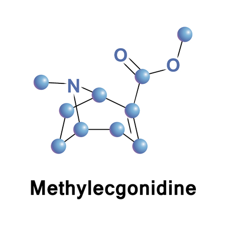 Methylecgonidine is a chemical derived from ecgonine or cocaine. It is a pyrolysis product formed when crack cocaine is smoked, making this substance a useful biomarker to specifically test it