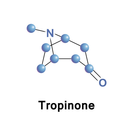 Tropinone is an alkaloid, a synthetic precursor to atropine, that shares tropane core structure Stock Photo