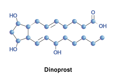 induce: Prostaglandin F2a, pharmaceutically termed dinoprost, is a naturally occurring prostaglandin used in medicine to induce labor and as an abortifacient.