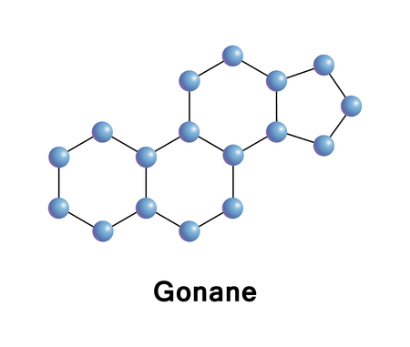 Gonane, known as perhydrocyclopentaphenanthrene, is a tetracyclic hydrocarbon ring structure and the fundamental steroid nucleus. It consists of a phenanthrene ring fused with a cyclopentane ring Stock Photo