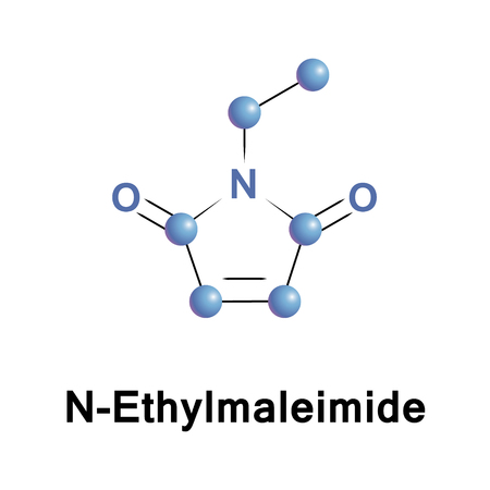 N Ethylmaleimide is an organic compound that is derived from maleic acid. It contains the imide group, it is reactive toward thiols and is used to modify cysteine residues in proteins and peptides